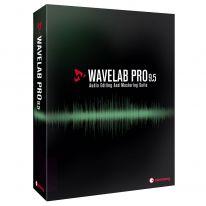 Steinberg Wavelab Pro 9.5 EDU